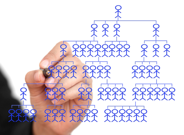 Human Resources Chart Cropped resized 600
